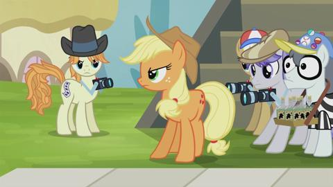 MLP_RR3_Honesty_AppleJack