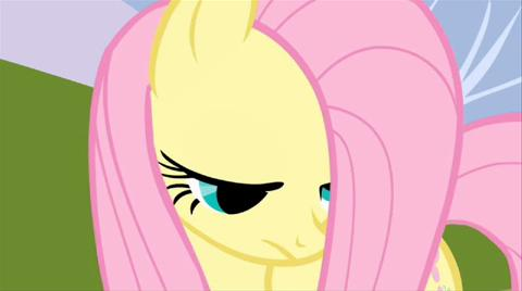 Movie Clip Meet Fluttershy Video