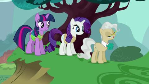 My Little Pony I Lessons In Friendship I What Teamwork Can Accomplish