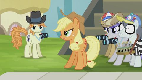 MLP Rainbow Reflection: Applejack