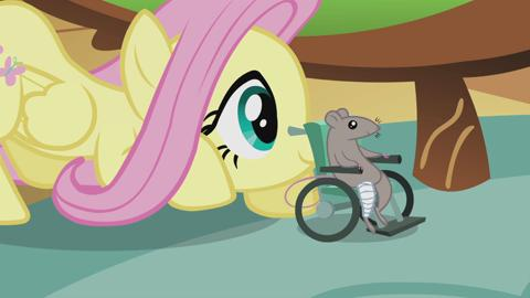 My Little Pony Watch Videos