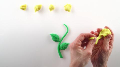 Play-Doh Creative Inspiration - Flower