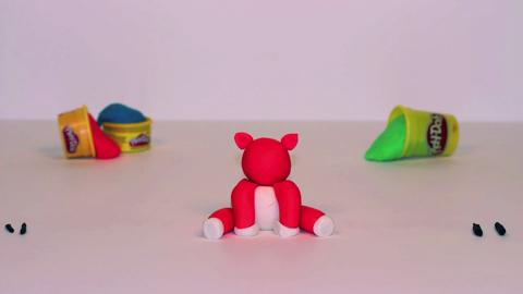 Stop Motion Tiger