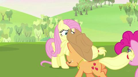 My Little Pony - Meet Fluttershy